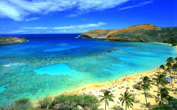 best beaches in oahu hawaii beach traveller