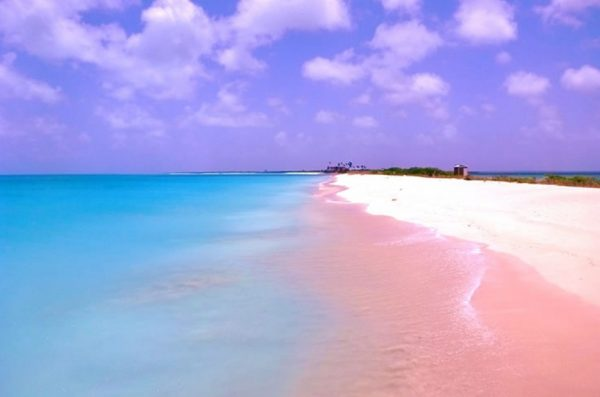 Pink Sands Beach, Bahamas
